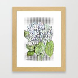 Hydrangea Paniculata Art Print | Fashion Illustration | Floral Botanical Drawing | Digital | Fashion Framed Art Print