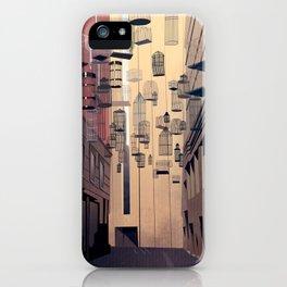 Birdcage Alley iPhone Case