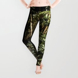 Path to Happiness Leggings