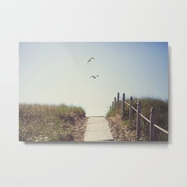 Gull Greetings  Metal Print