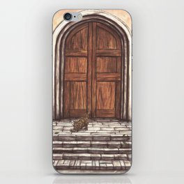 Cat and old door iPhone Skin