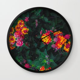 closeup blooming colorful flowers with green leaves Wall Clock