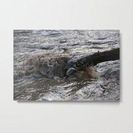 Flood Branch Metal Print