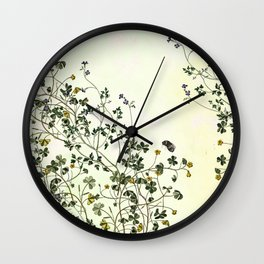 The cultivation of wild Wall Clock