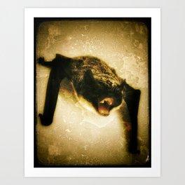 angry bat Art Print