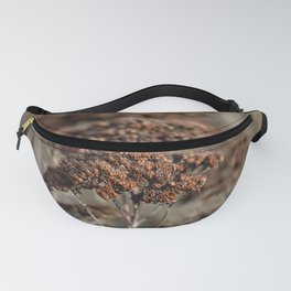 Seed pots | nature photography | brown Fanny Pack