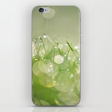 morning dew no.1 iPhone & iPod Skin