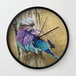 Lilac Breasted Roller resting. Wall Clock
