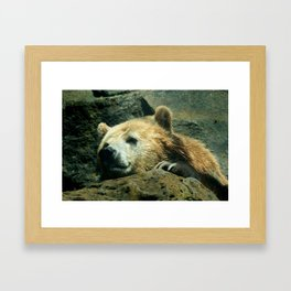 My What Big Claws You Have! Framed Art Print