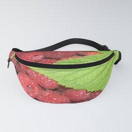 Raspberries Fanny Pack