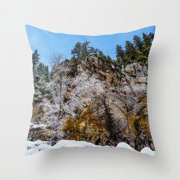 Tamanawas freshly coated Throw Pillow