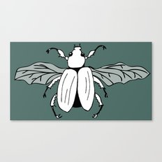It's a beetle and it has wings. Canvas Print