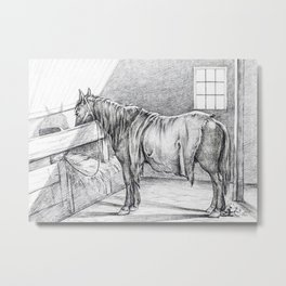Standing Horse In A Stable Metal Print