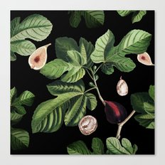 Figs Black Canvas Print