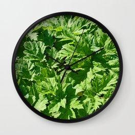 Green leaves of burdock Wall Clock