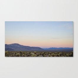 Joshua Tree Cholla Cactus Sunset Canvas Print