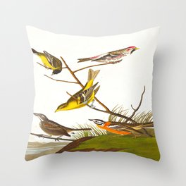 Ankansaw Siskin John James Audubon Vintage Scientific Hand Drawn Illustration Birds Throw Pillow