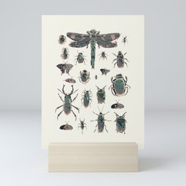 Collection of Insects Mini Art Print