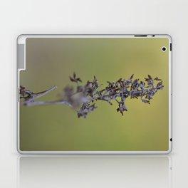 Pods Laptop & iPad Skin