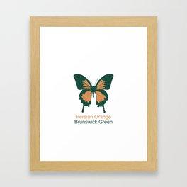 Ulysses Butterfly 10 Framed Art Print