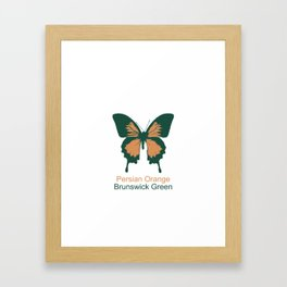 Ulysses Butterfly 10 Framed Art Print