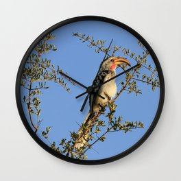The Real Zazu Wall Clock