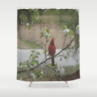 cardinal Shower Curtains featuring Cardinal  by Earth'sAnimalActivist23