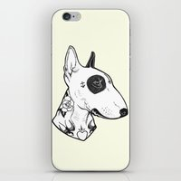 bull terrier iPhone & iPod Skins featuring Bull Terrier dog Tattooed by PaperTigress