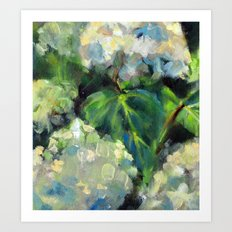 Hydrangeas in the Catskills Art Print