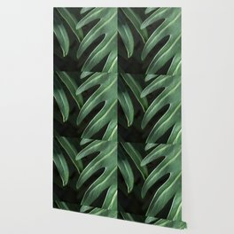 Tropical Leaves on Black Wallpaper