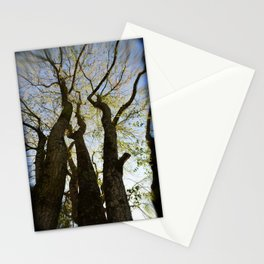 Evening Gathering Stationery Cards