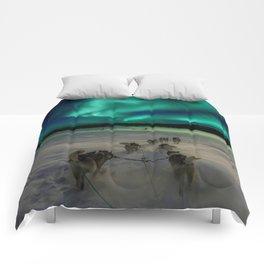 Winter Northern Lights Dog Sled (Color) Comforters
