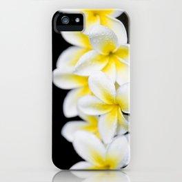 Plumeria obtusa Singapore White iPhone Case