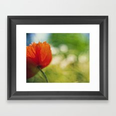 Poppy power Framed Art Print