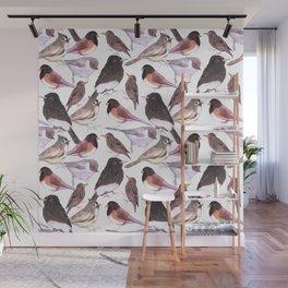 Wild birds watercolor- titmouse, bushtit, starling, phoebe, juncos Wall Mural