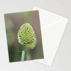 Clover Flower Stationery Cards