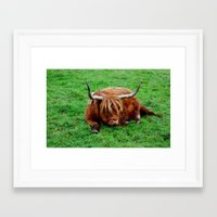 buffalo Framed Art Prints featuring buffalo by  Agostino Lo Coco