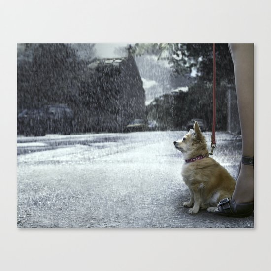 The dry dog Canvas Print