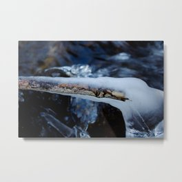 Branch in Ice Metal Print