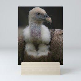 Griffon Vulture Portrait Mini Art Print
