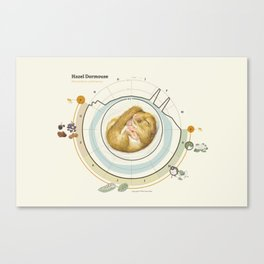 Hazel Dormouse Canvas Print