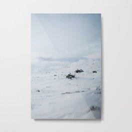 Oslo ⇒ Flåm Metal Print