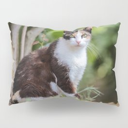 Are you meowing to me? Pillow Sham