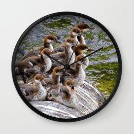 10 Little Mergansers on a Rock Wall Clock