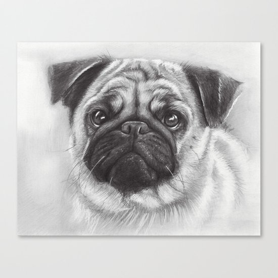 Cute Pug Dog Animal Pugs Portrait Canvas Print