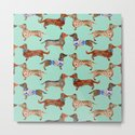 Dachshunds on Blue by catcoq