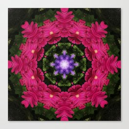 Hot Pink Gerbera And Cool Blue Viola Kaleidoscope Canvas Print