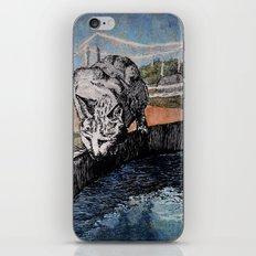 Barn Cat iPhone & iPod Skin