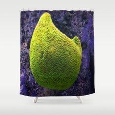Lime green sea creature Shower Curtain