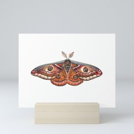 Small Emperor Moth (Saturnia pavonia) Mini Art Print